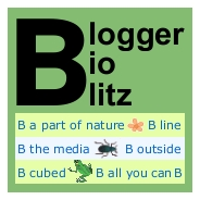Blogger BioBlitz mini logo