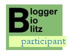 Blogger BioBlitz participant logo with birdy