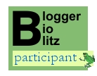 Blogger BioBlitz participant logo with frog
