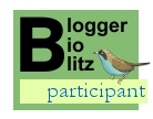 Blogger BioBlitz participant logo, words only